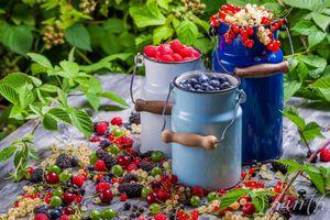 Фото бесплатно ягоды, ежевика, бидоны