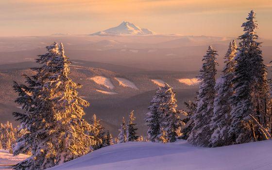 Фото бесплатно леса, пейзажи, горы, природа, пейзаж, снег, закат, деревья, зима