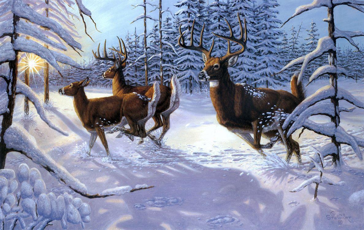 Обои зима, олени, лес, деревья, природа, пейзаж, изобразительное искусство картинки на телефон