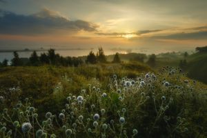 Рассвет на берегу Оки · бесплатное фото