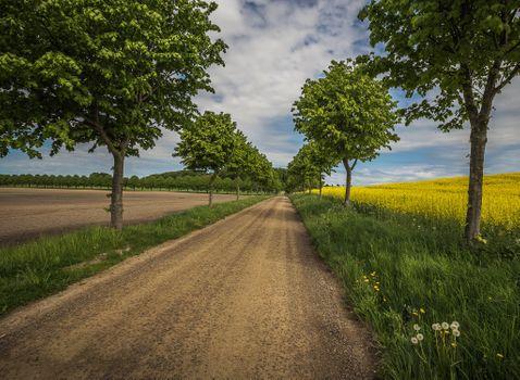 Photo free road, field, arable land