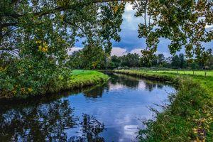 Бесплатные фото осень,река,деревья,ветки деревьев,поле,трава,канал