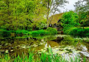 Бесплатные фото Англия,Европа,Монастырь Микельемама,Весна,национальный парк,пруд,деревья