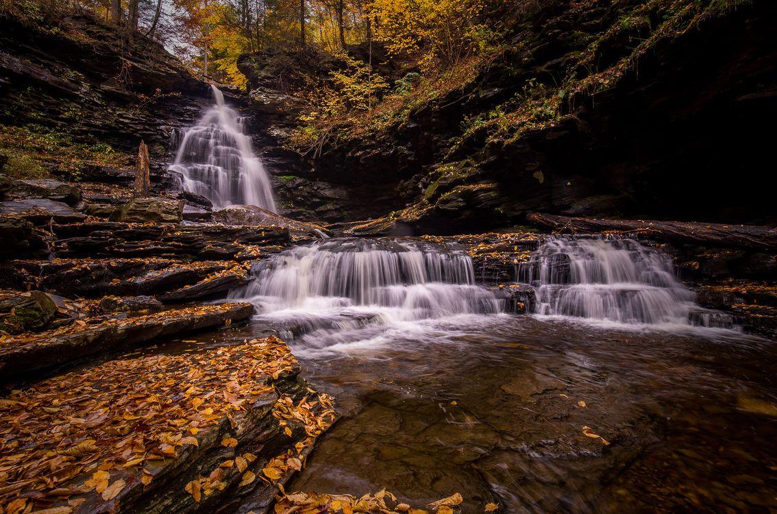 Фото бесплатно река, осенние листья, природа - на рабочий стол