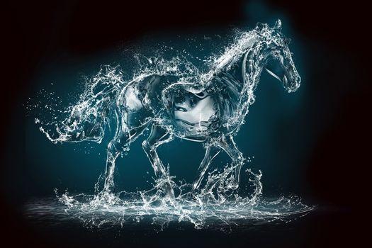 Фото бесплатно брызги, аннотация, лошадь