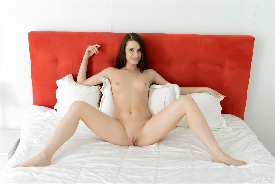 Celine - киска · бесплатное фото
