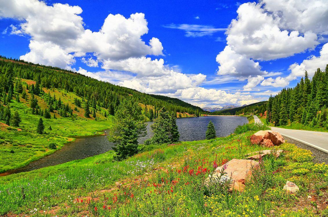 Фото бесплатно озеро, дорога, асфальт, река, елки, горы, холмы, деревья, небо, облака, природа, цветы, пейзаж, пейзажи