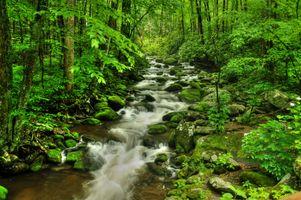 Заставки ручей, река, пейзаж
