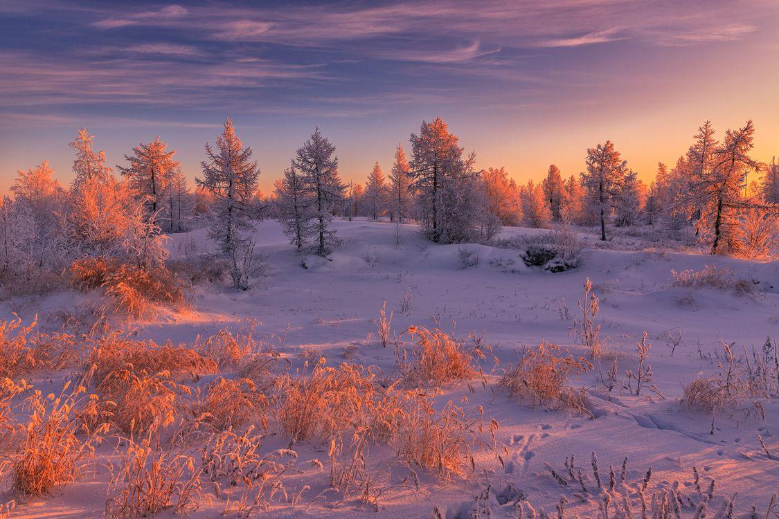 Зимний закат в России · бесплатное фото