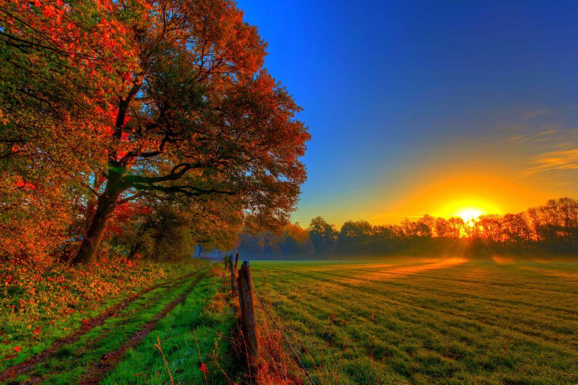 осенний закат · бесплатное фото