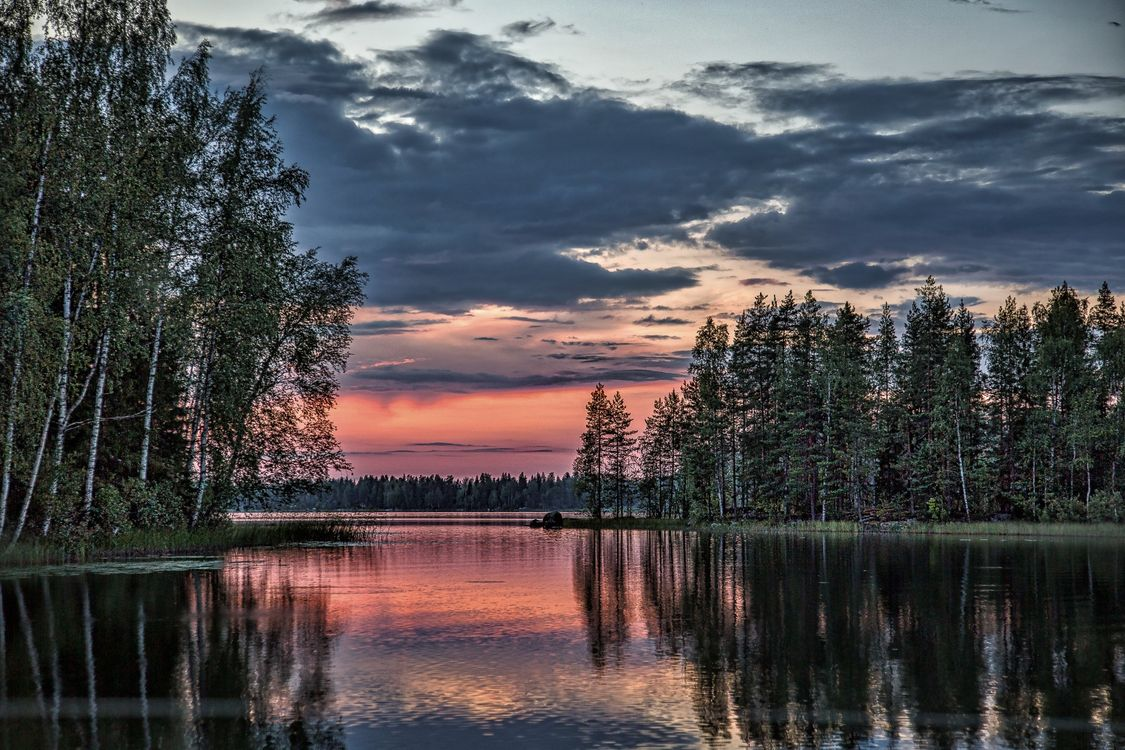 Фото бесплатно Finland, озеро, закат, сумерки, небо, отражение, лес, деревья, природа, пейзаж, пейзажи