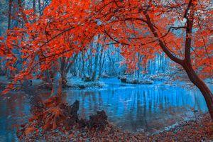 Фото бесплатно река, осень, рассвет