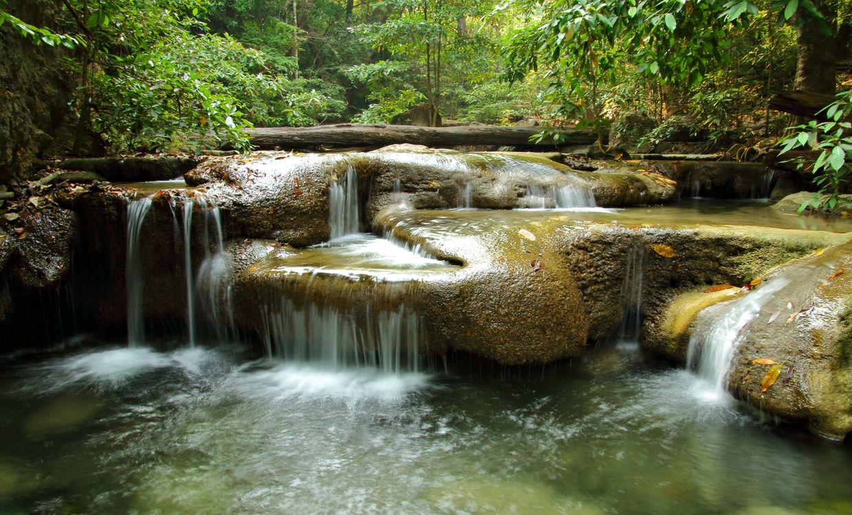 Фото бесплатно лес, водопад, камни, скалы, речка, деревья, природа, пейзаж, пейзажи