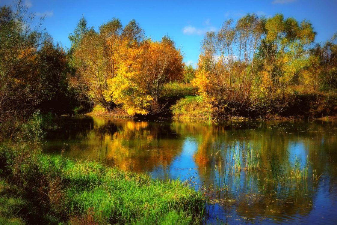 Фото бесплатно осень, озеро, пруд, водоём, лес, деревья, парк, осенние краски, краски осени, осенние листья, осенний лес, пейзаж, пейзажи - скачать на рабочий стол
