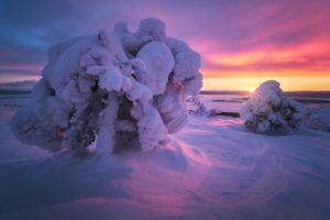 Краски Заполярья · бесплатное фото
