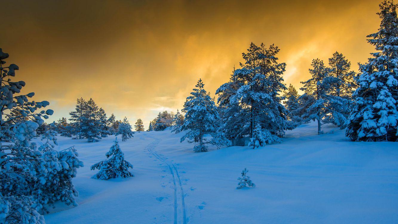 Закат в Норвегии · бесплатное фото