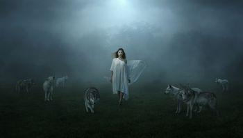 Фото бесплатно девушка, волки, поле