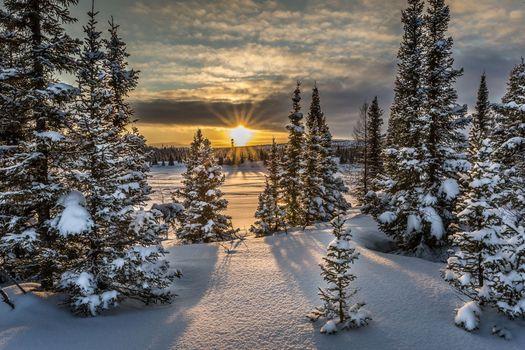 Фото бесплатно природа, закат, сугробы