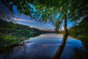 Бесплатные фото Dollerup Hills at Hald Lake,Jutland,Denmark,озеро,сумерки,закат,деревья