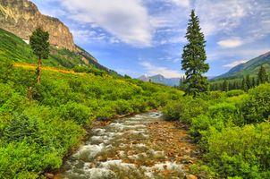 Бесплатные фото река,горы,течение,деревья,растительность,небо,природа