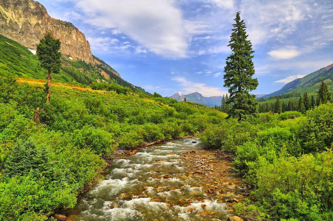 Фото бесплатно река, горы, течение, деревья, растительность, небо, природа, пейзаж, пейзажи