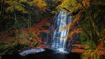 Фото бесплатно скалы, лес, поток