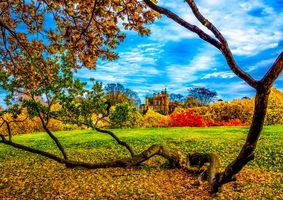 Фото бесплатно Пейзаж, Европа, Англия, Гринвич, Лондон, Осень, парк, деревья, замок, осенняя листва, краски осени