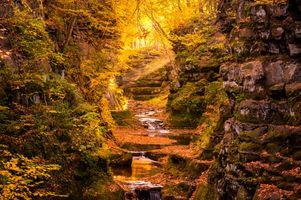 Фото бесплатно водопад, осенние листья, природа