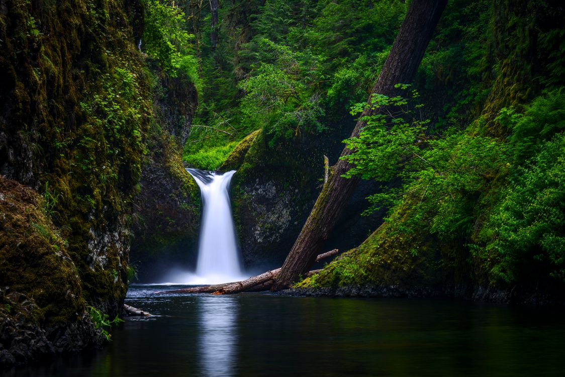 Photos for free nature, Columbia River Gorge, Oregon - to the desktop