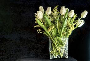 Photo free bloom, vase, flower arrangement