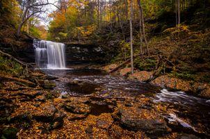 Заставки Государственный парк Ricketts Глен, скалы, осенние цвета