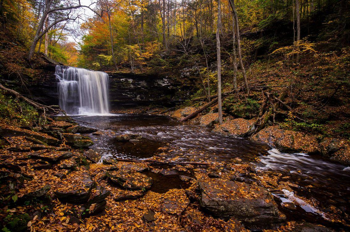 Фото бесплатно Государственный парк Ricketts Глен, скалы, осенние цвета - на рабочий стол