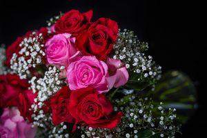 Фото бесплатно букет, розы, цветочная композиция