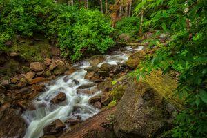 Фото бесплатно лес, река, камни, деревья, природа, пейзаж