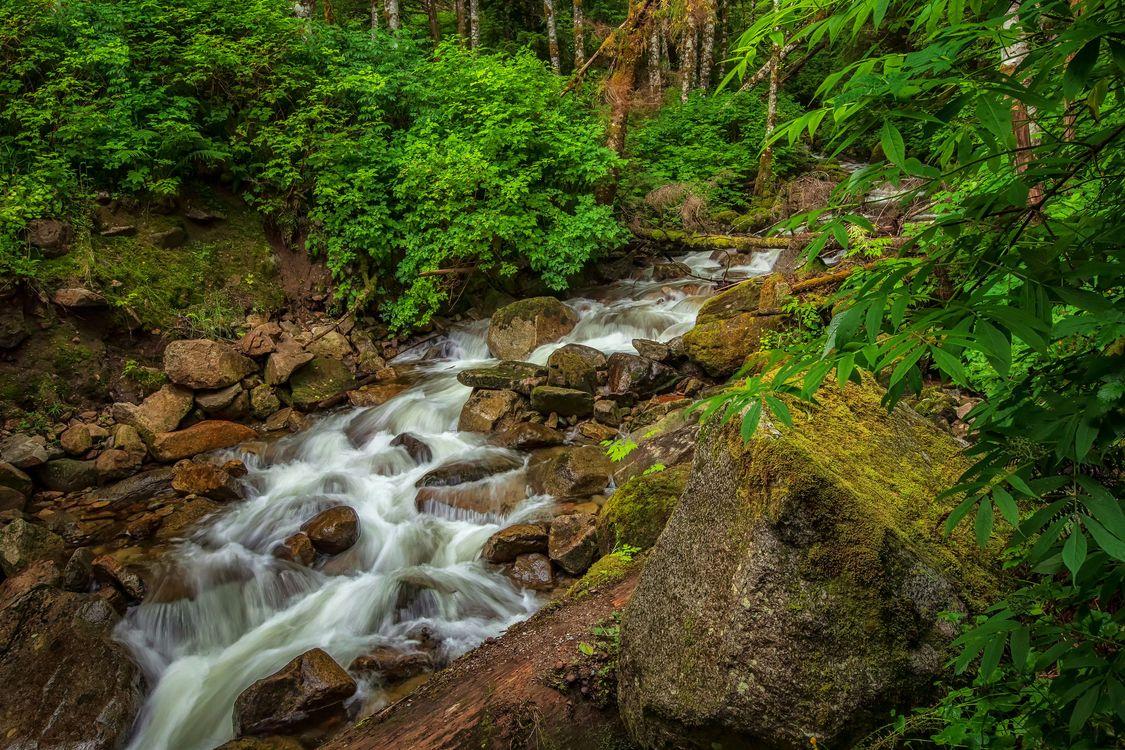 Фото бесплатно природа, камни, река - на рабочий стол