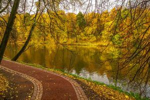 Фото бесплатно Москва, пейзаж, осенние листья