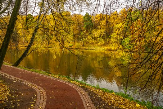Photo free Moscow, landscape, autumn leaves