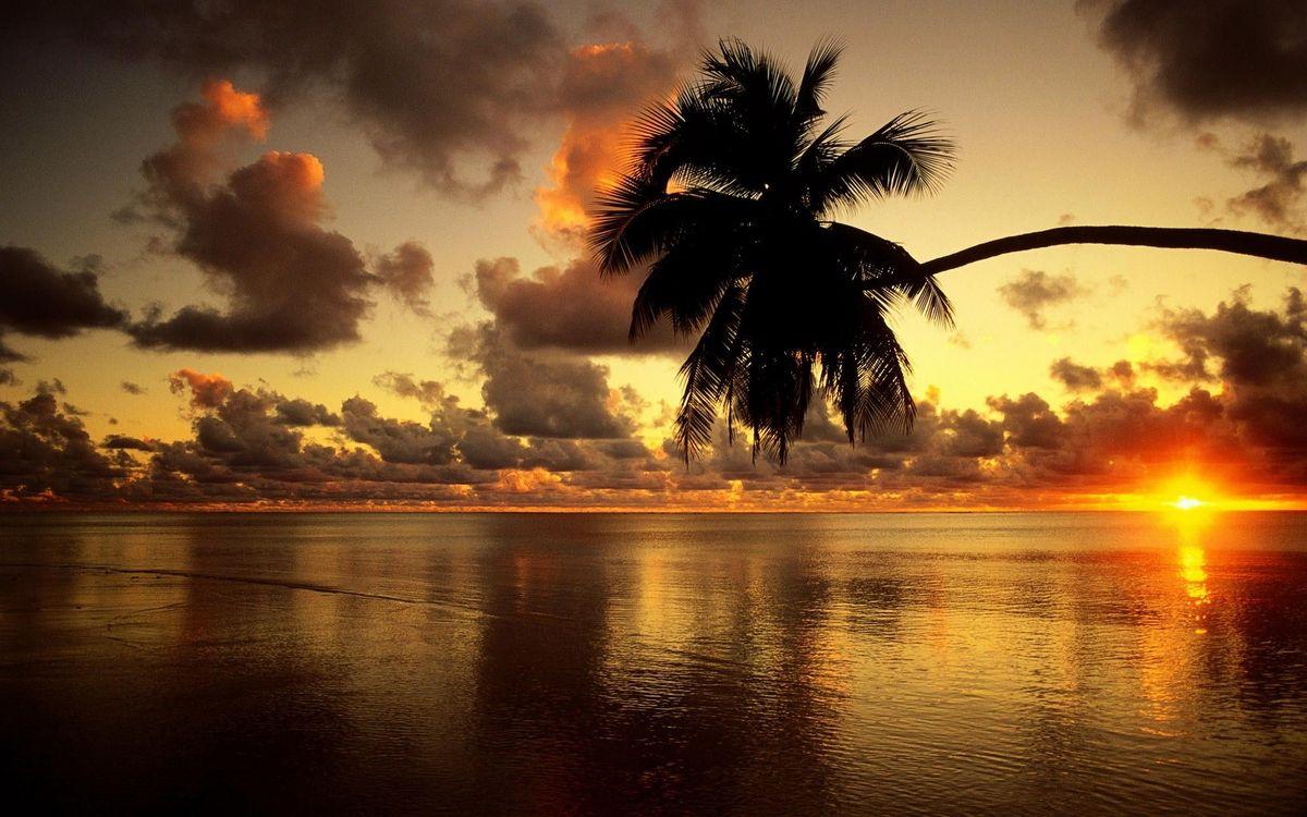 Фото бесплатно закат, море, пальмы, облака, красочный пейзаж, простор, пейзажи - скачать на рабочий стол