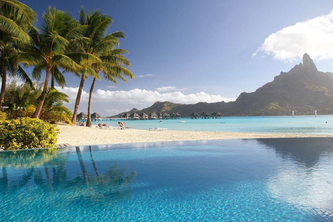 Обои тропические, пальмы, пейзаж картинки на телефон