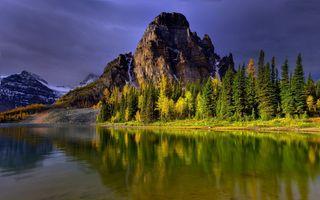Фото бесплатно гора, туман, лес