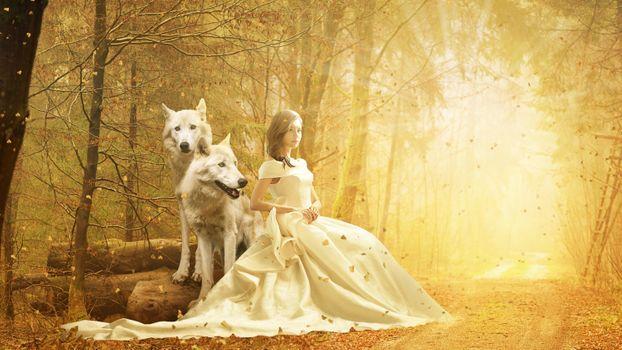 Бесплатные фото осень,лес,дорога,девочка,волки,солнечные лучи,фантазия,фотошоп,art