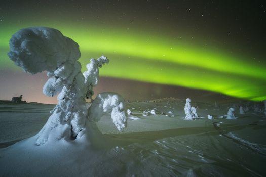 Северное сияние над Волосяной сопкой · бесплатное фото