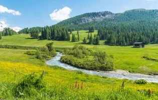 Заставки Швейцария, луга, поля