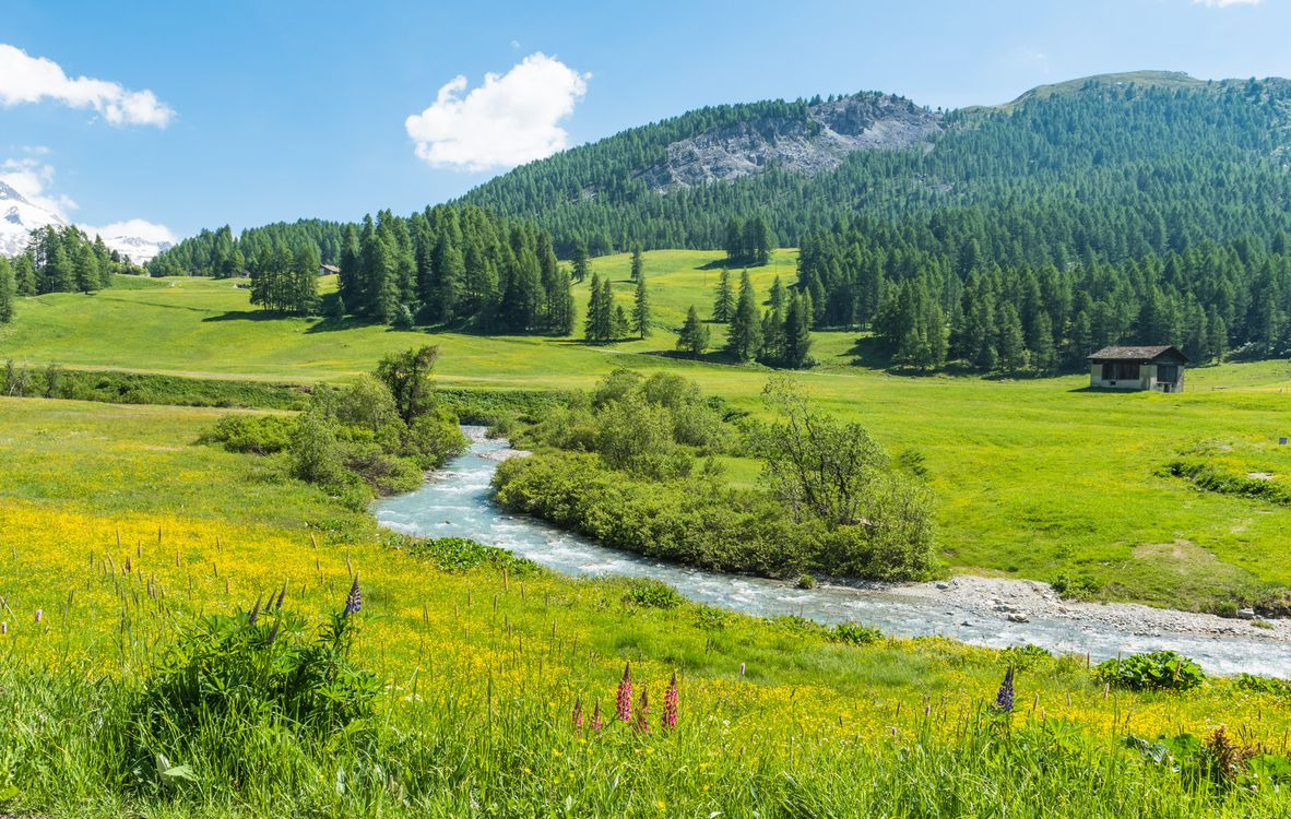 Free photo Switzerland, meadows, fields, hills, mountains, river, house - to desktop