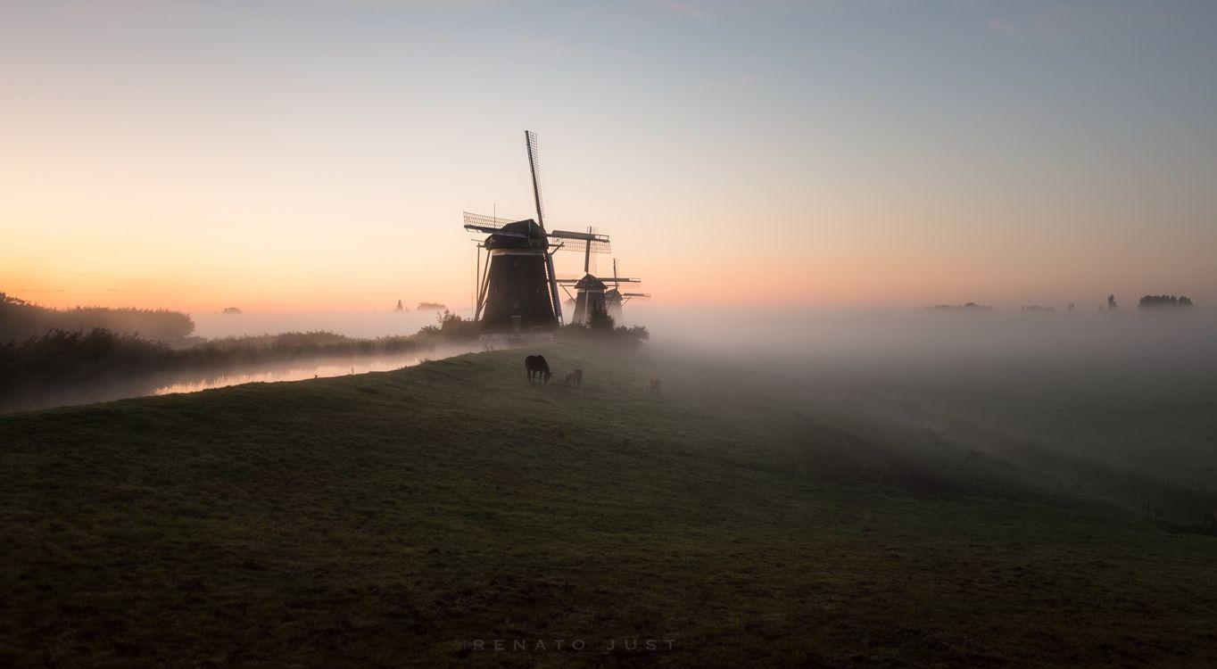 Фото мельницы туман рассвет - бесплатные картинки на Fonwall