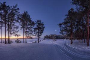 Фото бесплатно поле, снег, сумерки