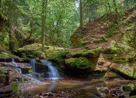 Бесплатные фото водопад,лес,деревья,водоём,скалы,природа,пейзаж
