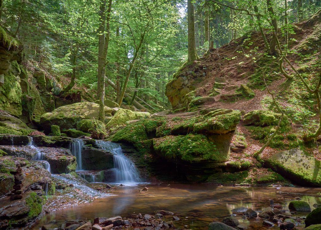 Фото бесплатно водопад, лес, деревья, водоём, скалы, природа, пейзаж, пейзажи