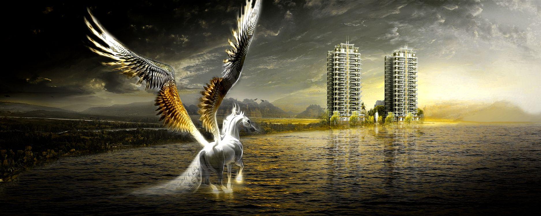 Фото бесплатно арт, креатив, конь, пегас, здания, море, небо - на рабочий стол