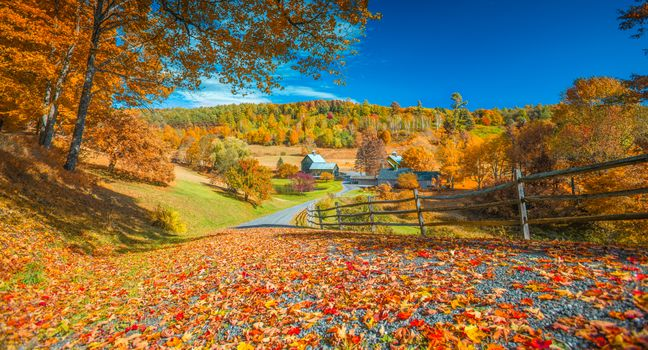 Photo free Autumn in Vermont, autumn, road